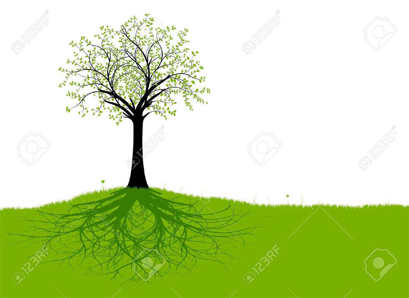 tree of life images u0026 stock pictures royalty free tree of life