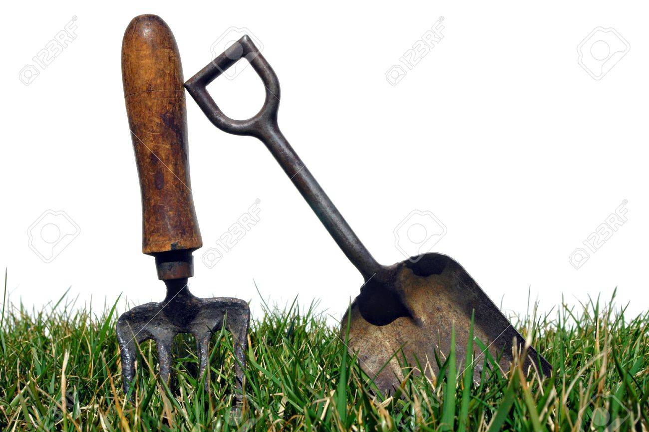 Antique Gardening Tools Shovel And Spading Fork In Grass Over White Stock  Photo   6870453