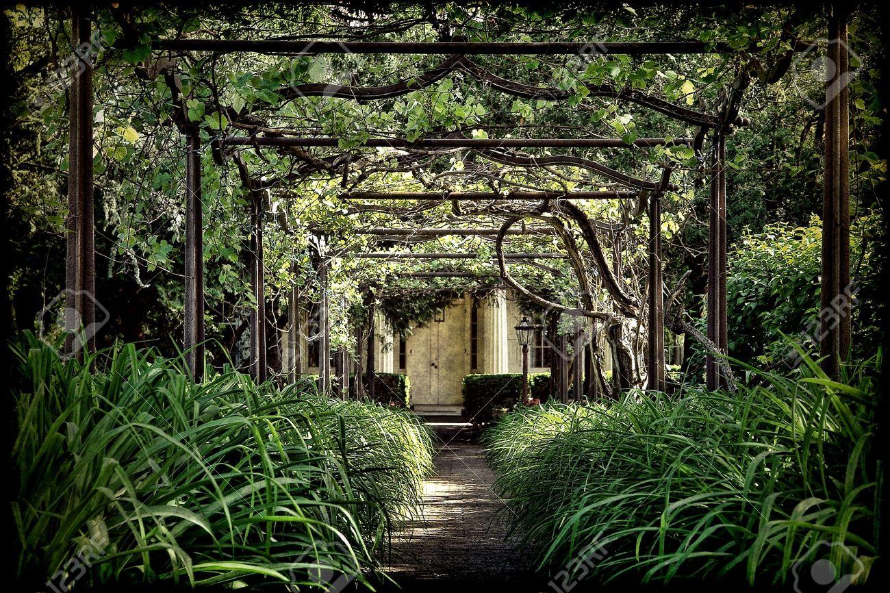 Antique tonnelle pergola plus âgés allée de briques avec de la végétation  verte et luxuriante envahie anciennes arches en treillis d\'acier ...