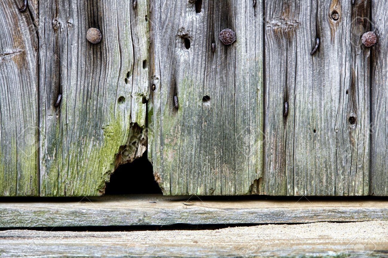 Mouse Entrance Hole At The Bottom Of An Antique Barn Door Stock