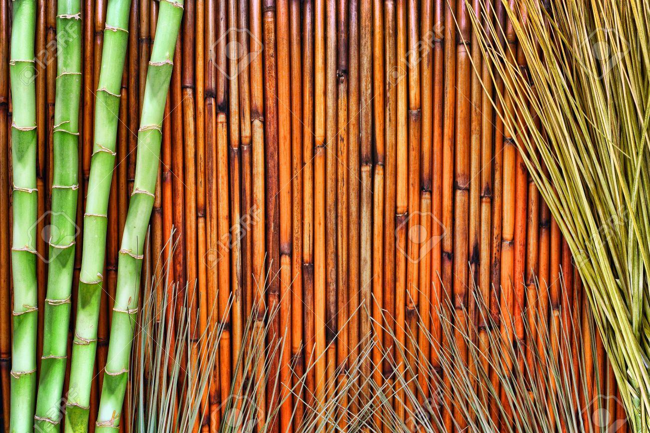 asiatisch inspirierte beleuchtung badezimmer asiatisch inspirierte grünen bambuspflanzen stängel und eastern wildes gras dekor mit einer naturfaser bildschirm grunge hintergrund inspirierte grünen und