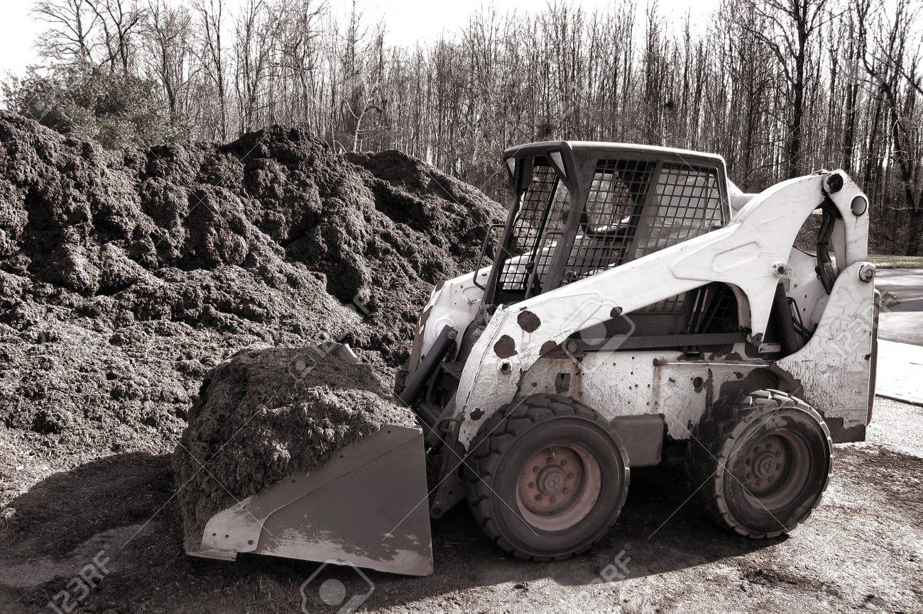 Compact hydraulic skid steer loader yard work machine with loaded excavator scoop and safety mesh cab digging a pile of organic mulch for a landscaping project Stock Photo - 12837888