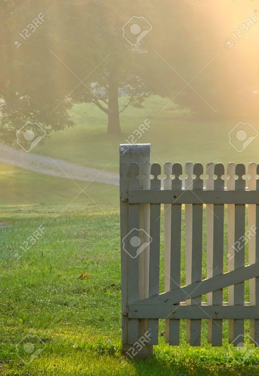 Vieille porte de jardin en bois dans une prairie à la lumière du matin la  brume douce brume