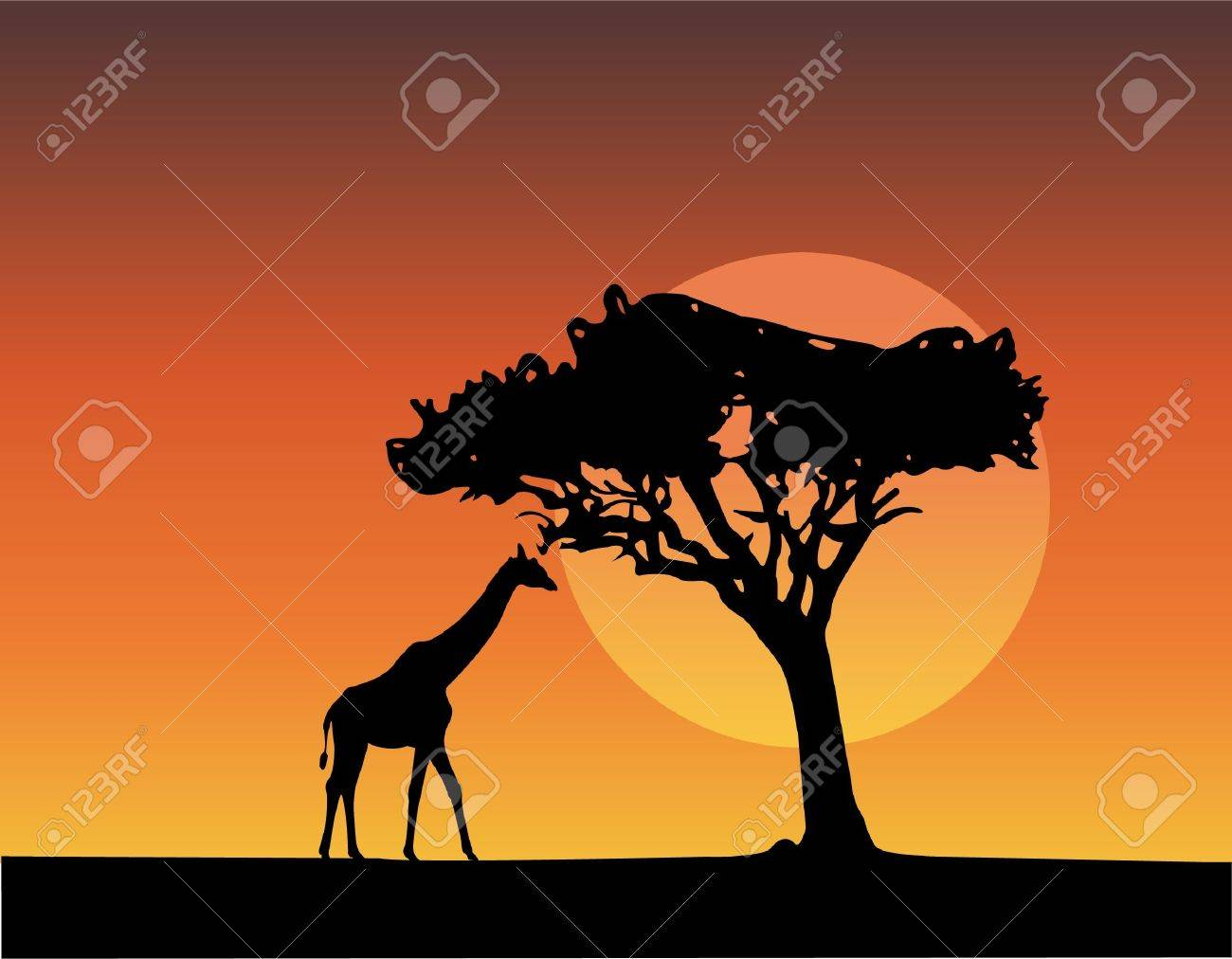 africa safari silhouettes of giraffe Stock Vector - 9132177