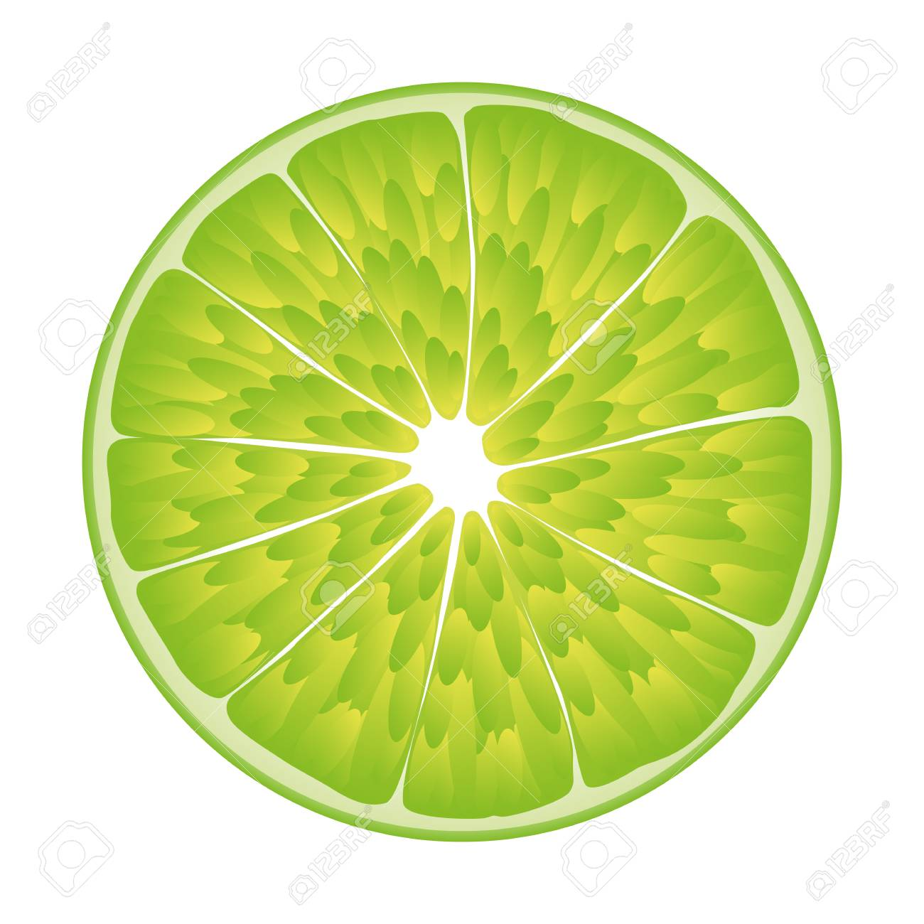 isolated realistic colored circle slice of green color juicy