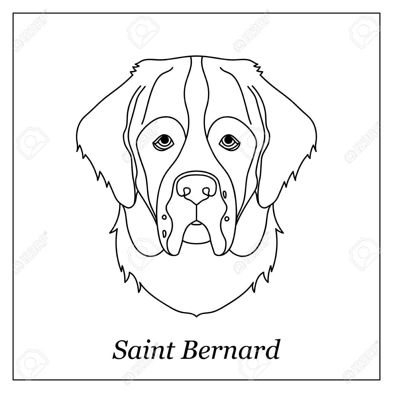 Tête De Contour Noir Isolée De Saint Bernard Sur Fond Blanc Portrait De Chien De Race Dessin Animé