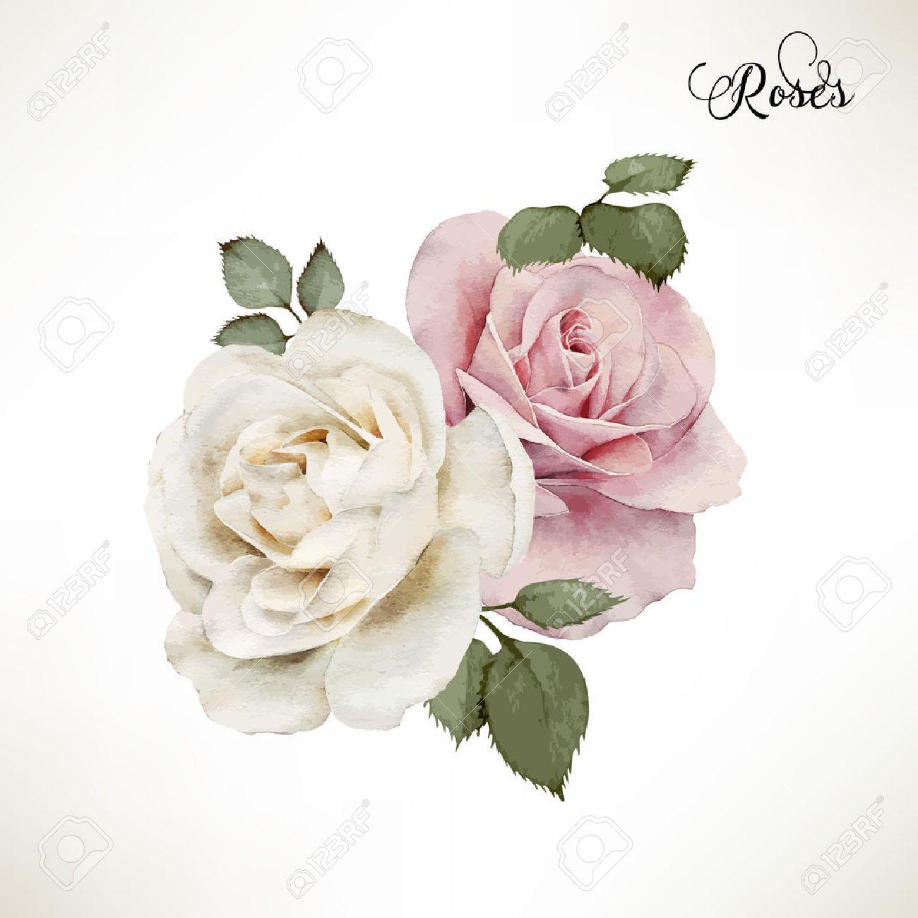 Blumenstrauss Aus Rosen Aquarell Kann Als Grusskarte