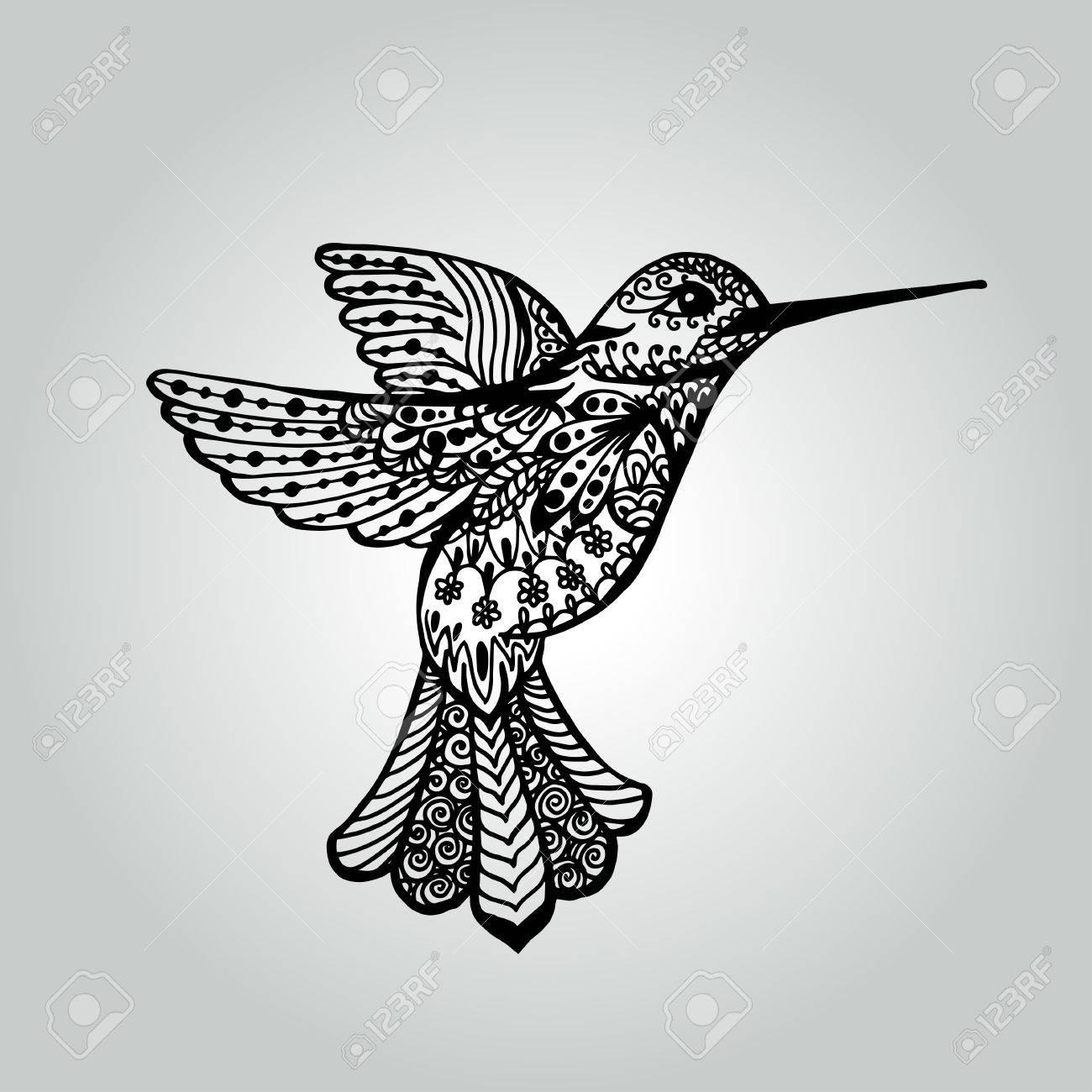 Resumen Doodle Colibrí. Colección De Vida Silvestre Ilustraciones ...