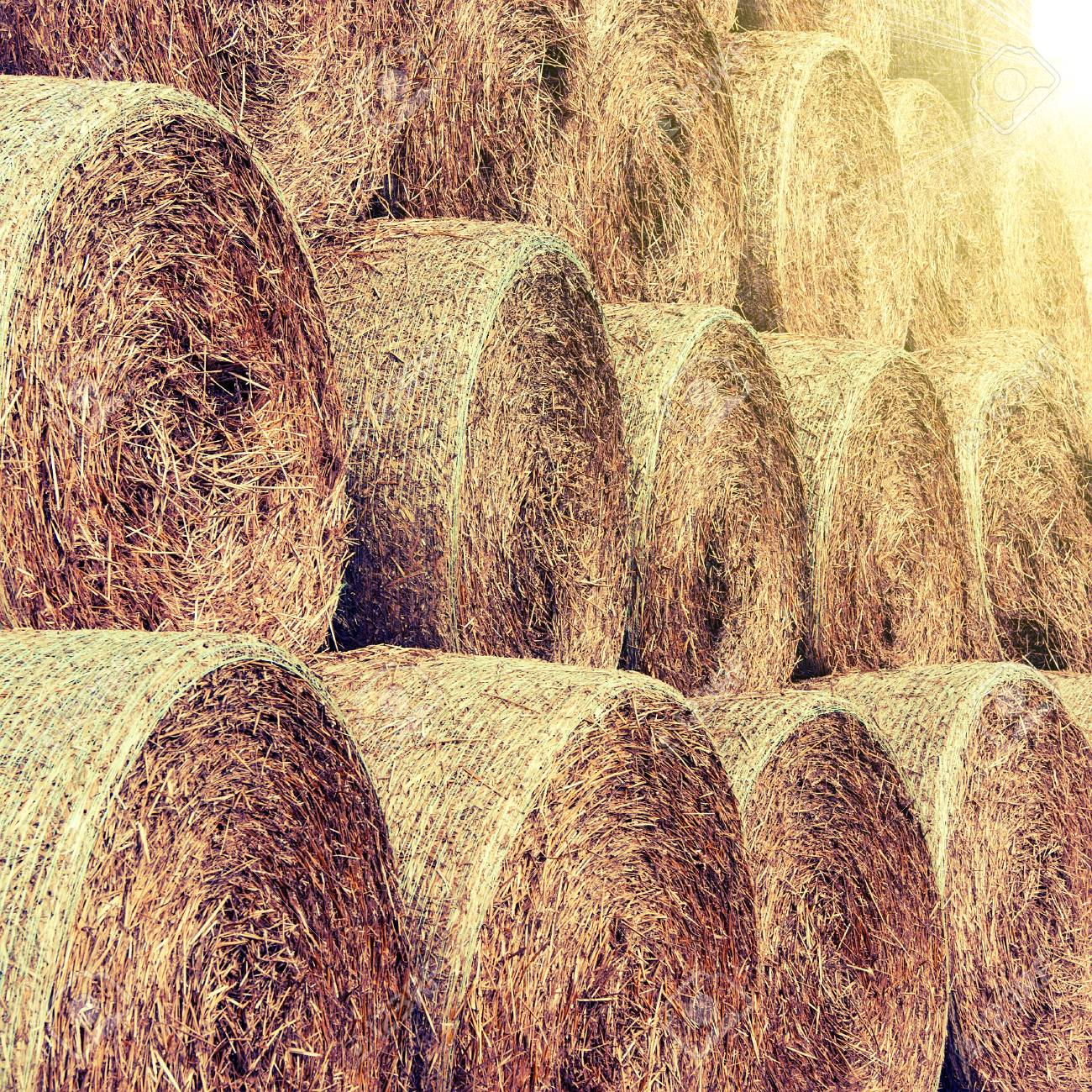 hay and straw bales in the end of summer - 43194370