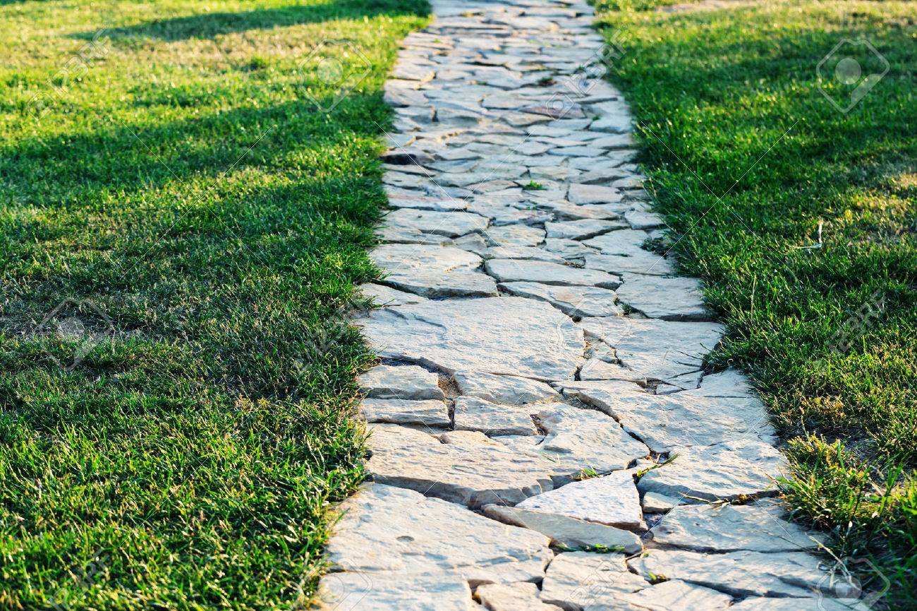 Garden stone path with grass growing up between the stones - 43372325