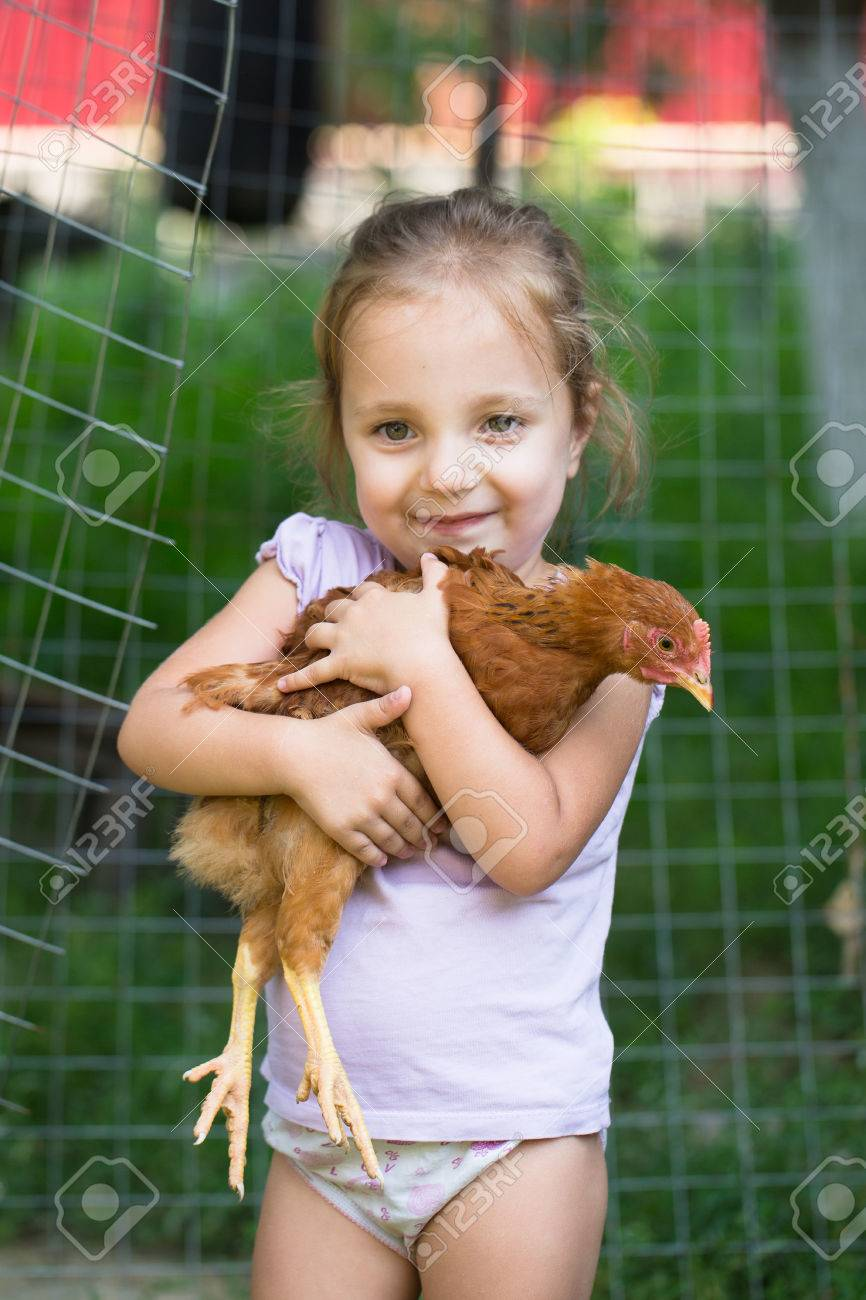 people series: little girl with red hen - 66540938