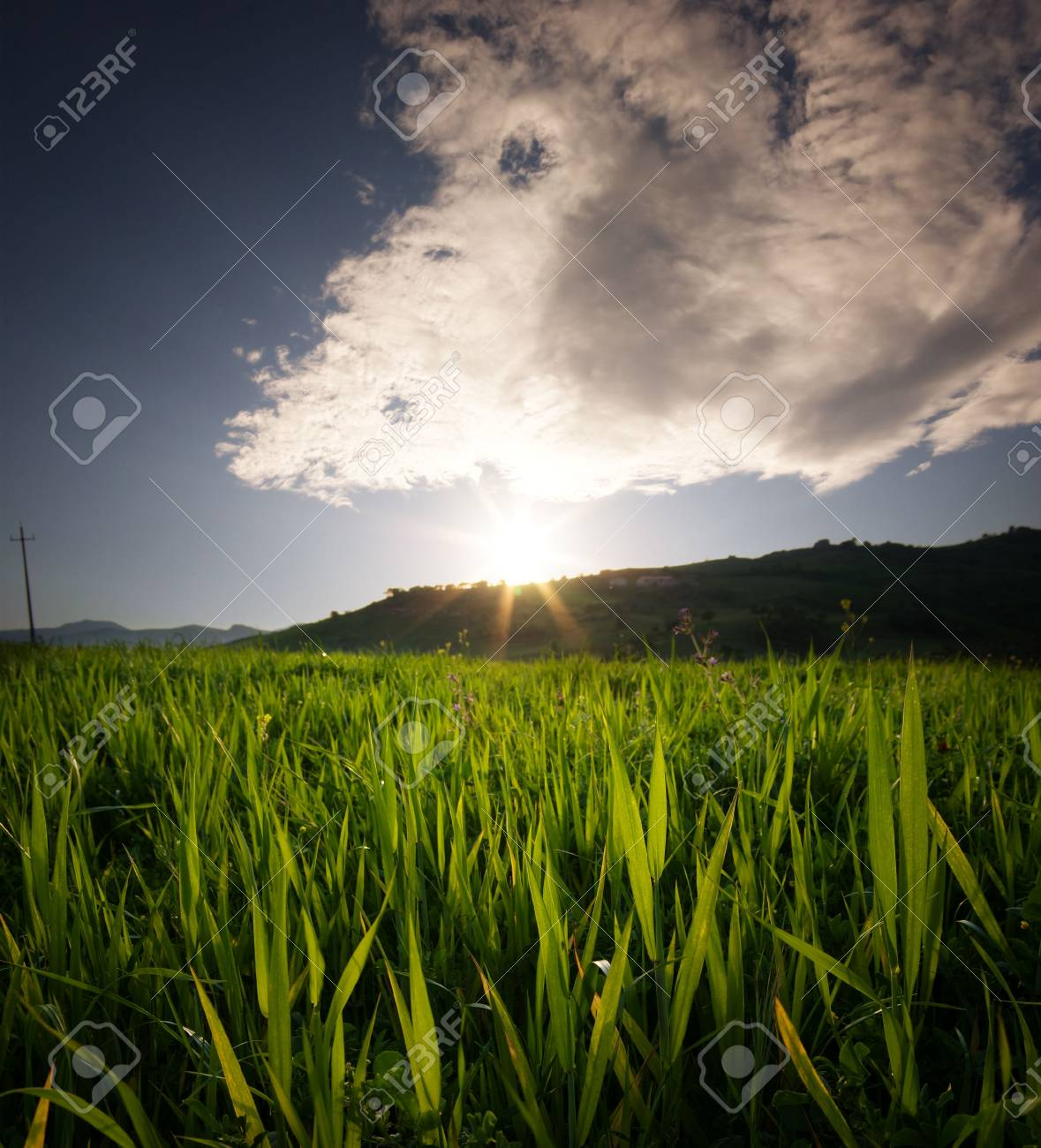 the sun sets on a cultivated field Stock Photo - 4752701