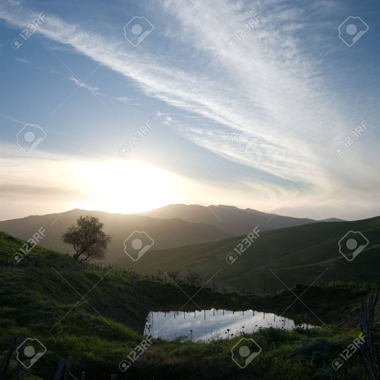lonely tree and pond at the sunset on the ridges of the misty mountains Stock Photo - 6479088