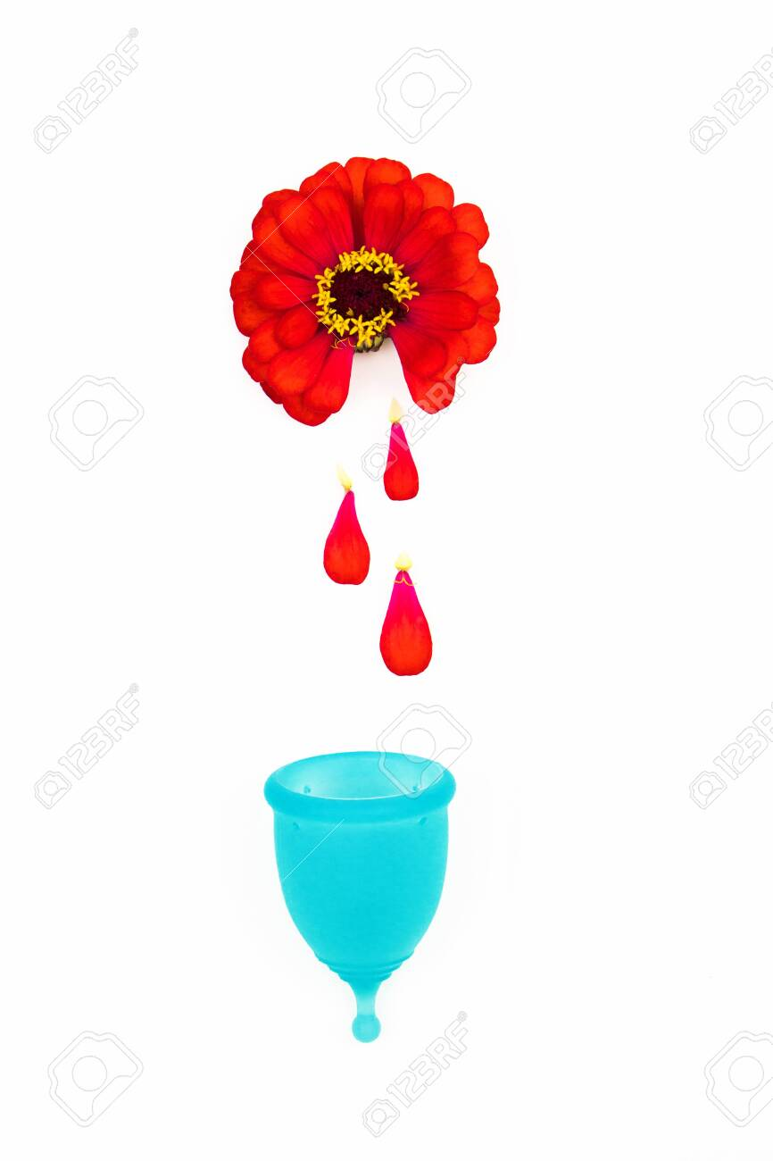 red zinnia flowers delicately demonstrate the period of female menstruation for woman s personal hygiene products. red petals fall like drops of blood into a blue menstrual cup - 129169326