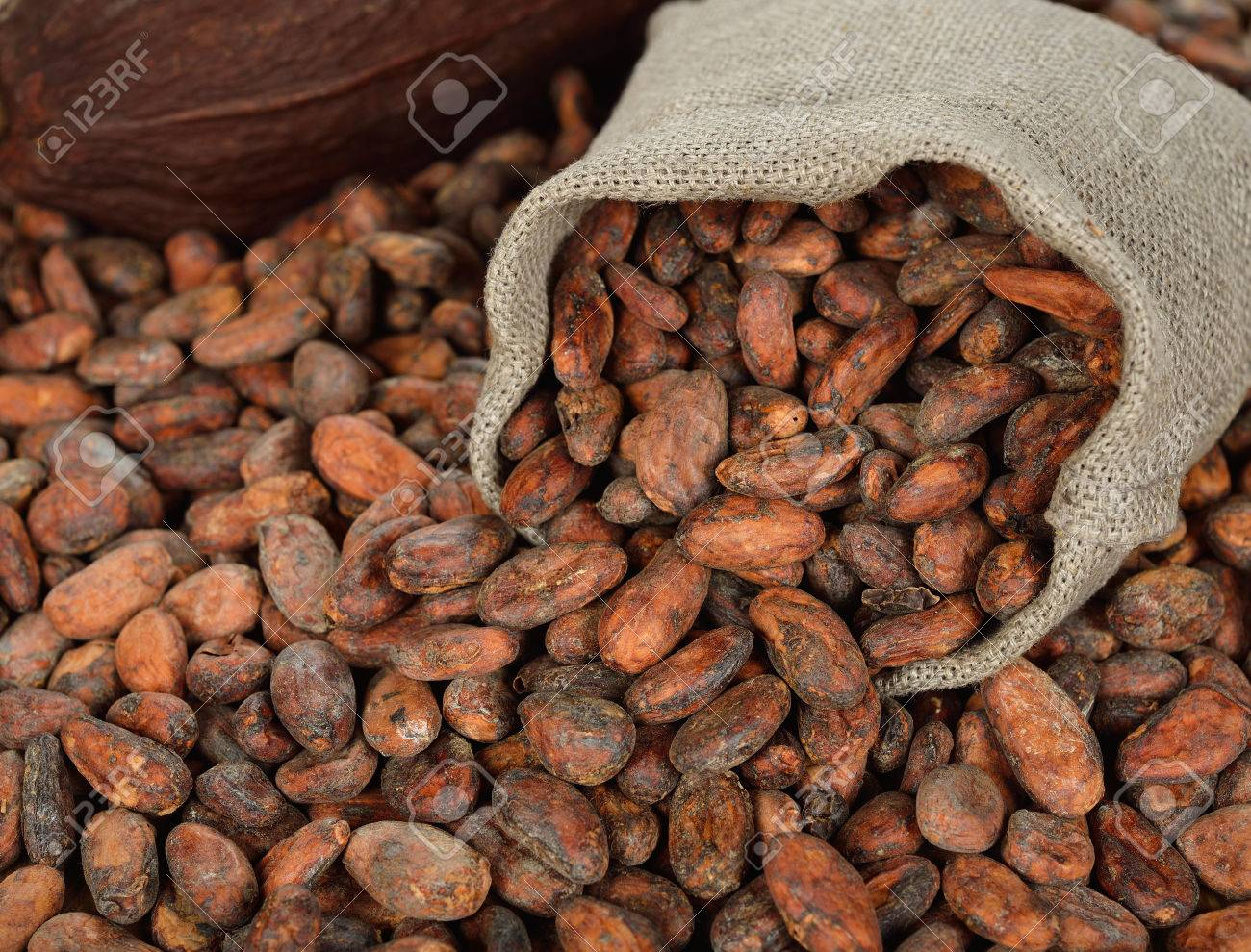 Cocoa beans in a bag on a brown background - 30047459