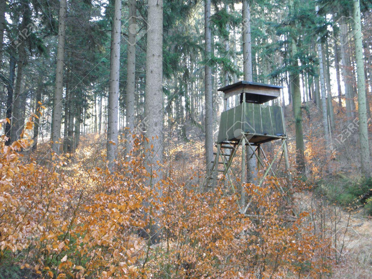 Čeke i osmatračnice 12750141-hunting-tower-in-the-forest-in-the-spring