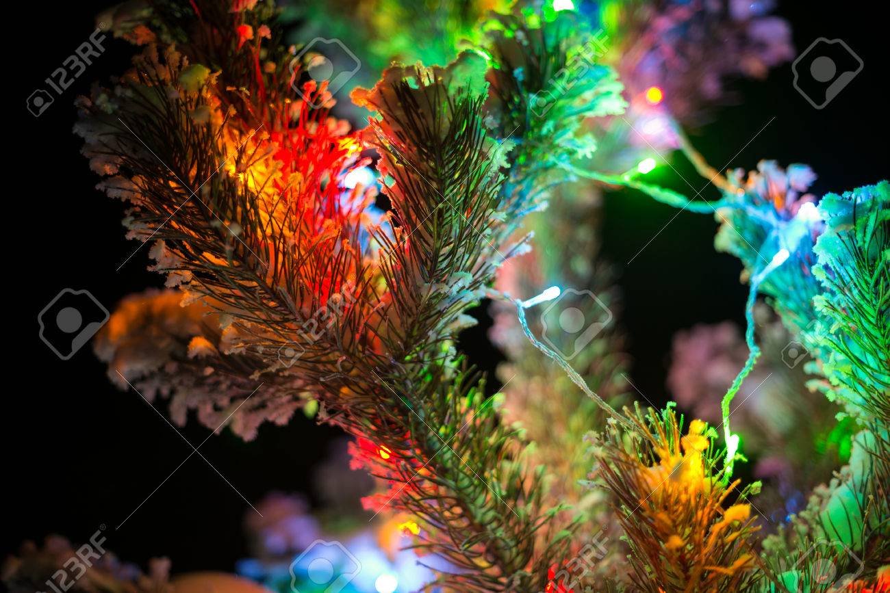Shining Lights Of A Natural Christmas Tree Covered Snow New Years Night Black Outdoor Background