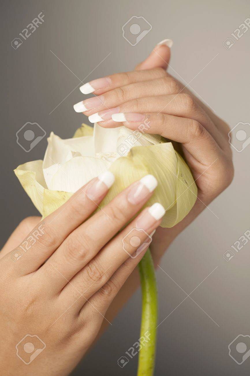 White lotus flower nice hands with nail art stock photo picture white lotus flower nice hands with nail art stock photo 20874347 dhlflorist Image collections