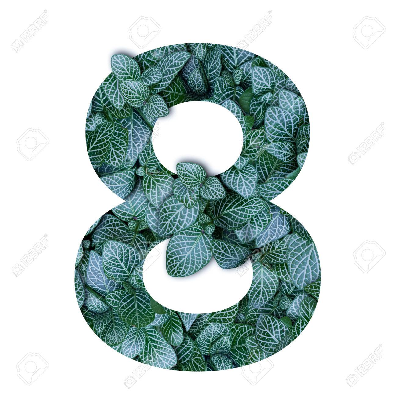 80167070-nature-concept-alphabet-of-green-leaves-in-number-eight-shape.jpg