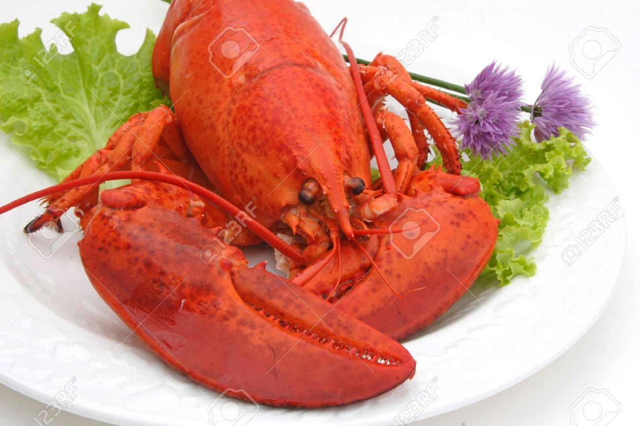 Cold cooked lobster on a plate with garnishes of lettuce and chives. - 3314662