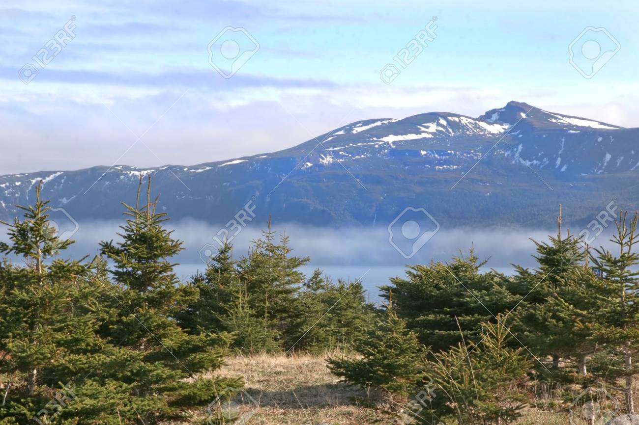 A view of the fog rolling into a bay in Gros Morne National Park (a Unesco site), Newfoundland, Canada. - 6147930