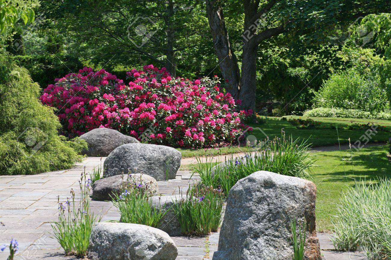 Roches placées dans la surface dure d\'un jardin d\'ornement. Rhododendron  fleurissant en arrière-plan.