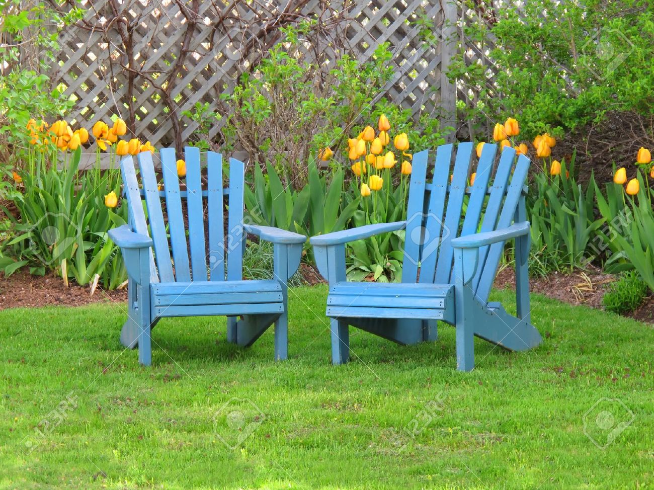 Blue wooden lawn chairs in the spring garden stock photo 9363405