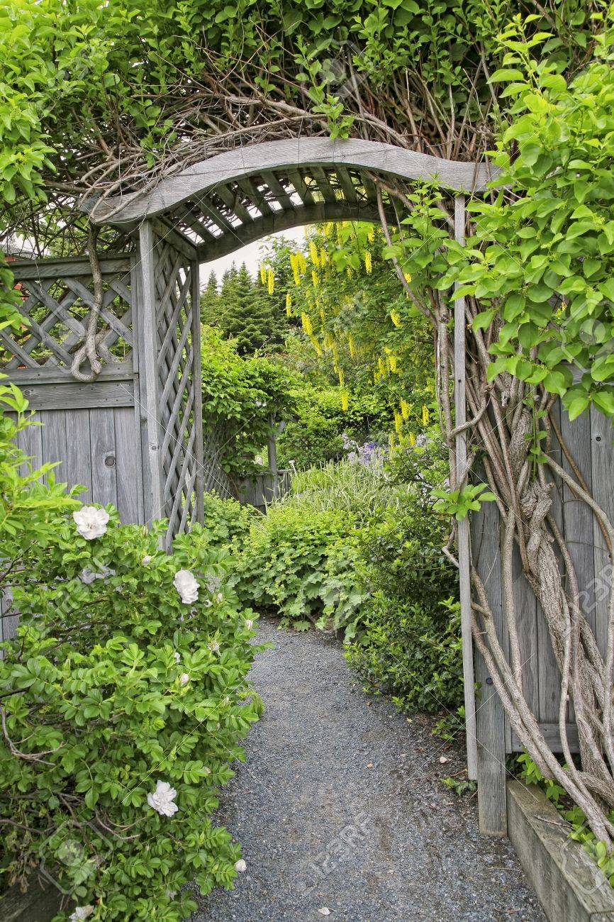 Wooden arbor and fence in a perennial garden or park like setiing. - 10971176