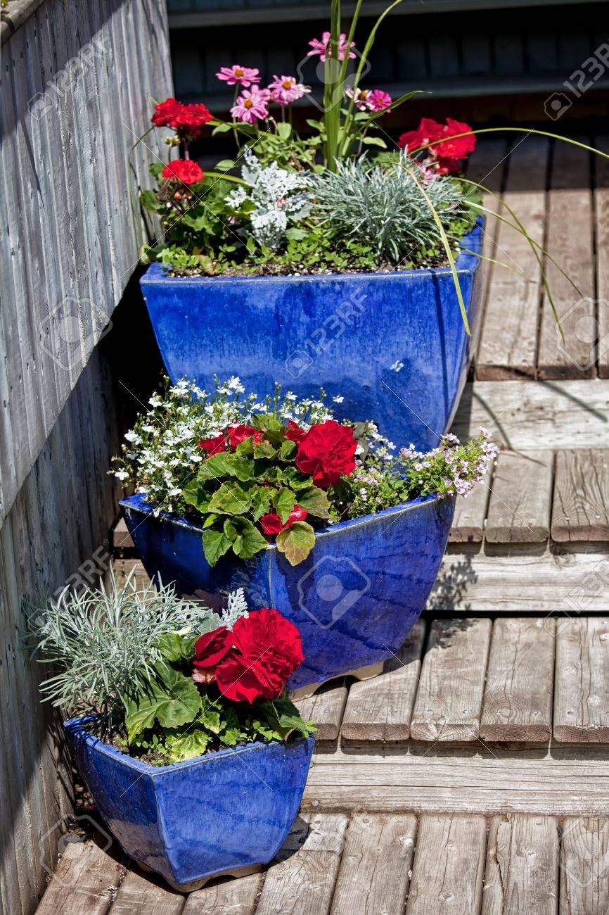 Blue glazed terracotta plant pots filled with annual flowers used as home decoration. Stock Photo - 17462498