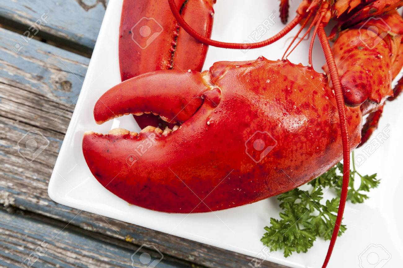 Cooked lobster on a platter on a wooden table. Stock Photo - 26564262