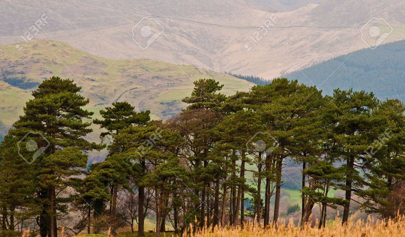 The rugged mountain countryside of Wales in the UK. Stock Photo - 4832010