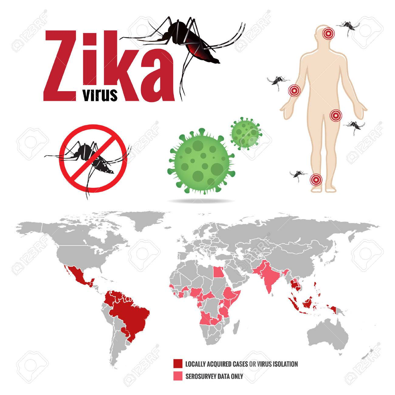Zika Virus And Human And Stop Mosquito Sign And Map World Royalty