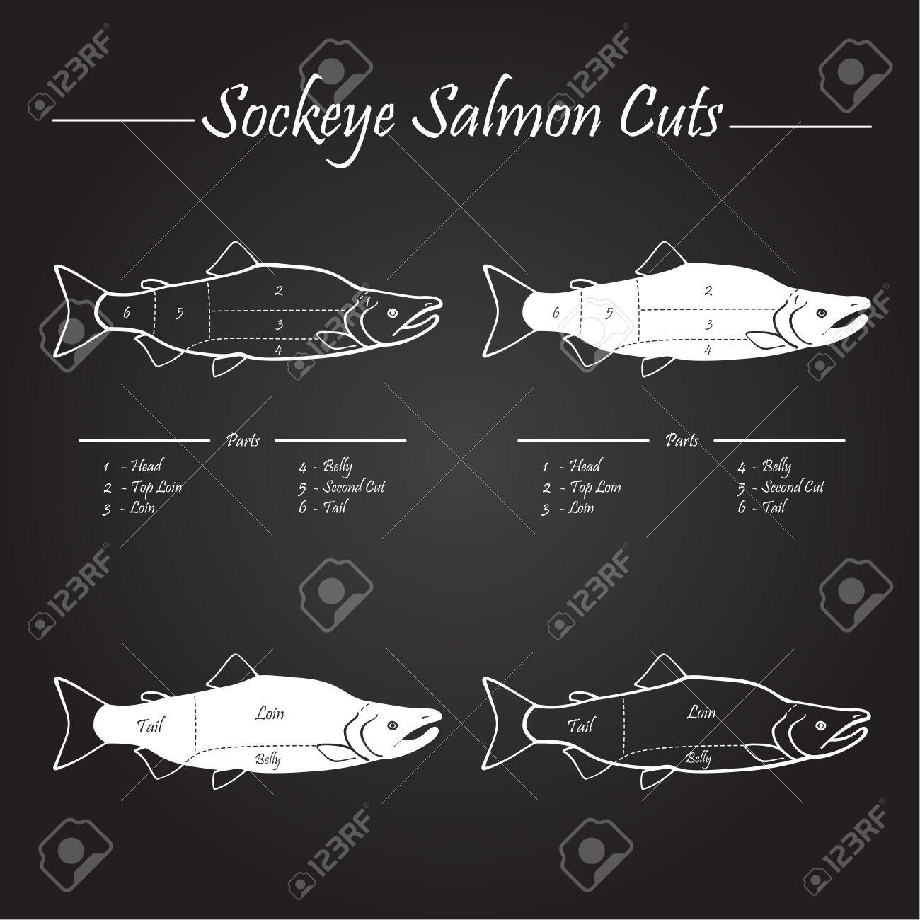 Salmon Cuts Diagram - Circuit Connection Diagram •