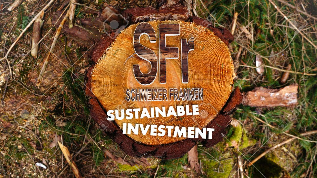 Concept image for sustainable investment in switzerland franc concept image for sustainable investment in switzerland franc market with the symbol switzerland franc situated on buycottarizona Images