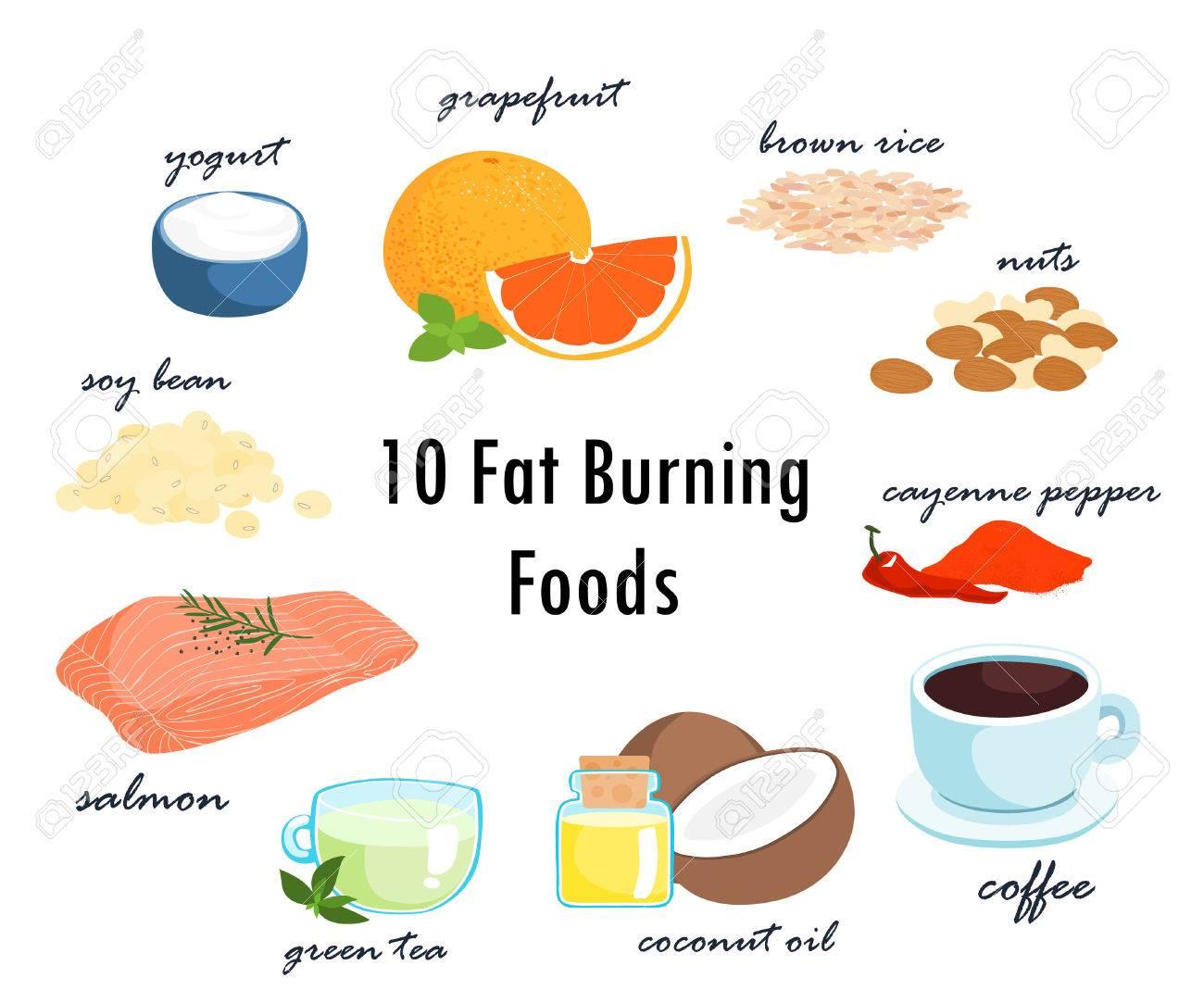 Die meisten Lebensmittel können Fettverbrennung Top-Ten-Artikel  Vektor-Illustration