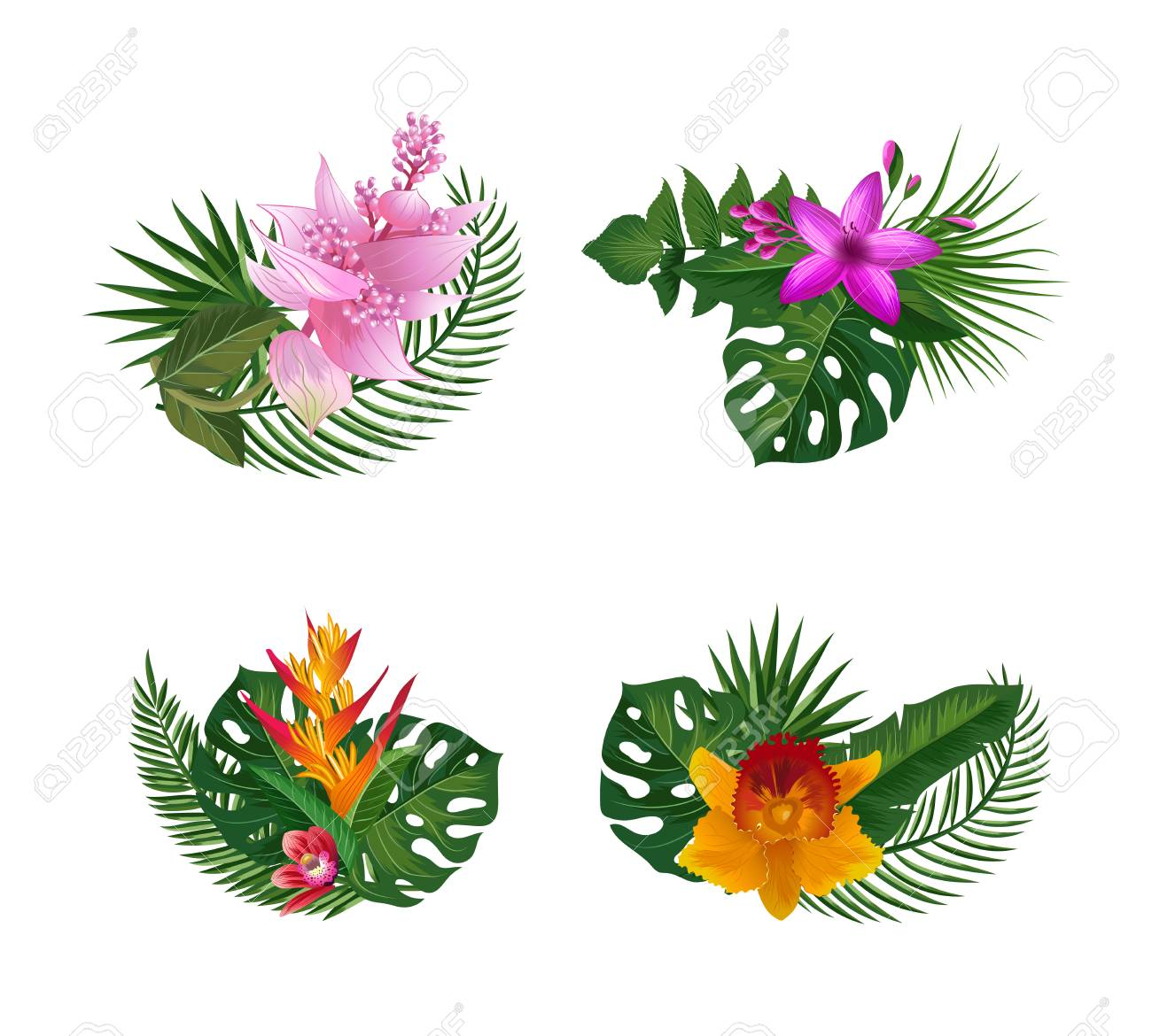 Vector Tropical Palm Leaves And Exotic Flower Elements Bouquets ...