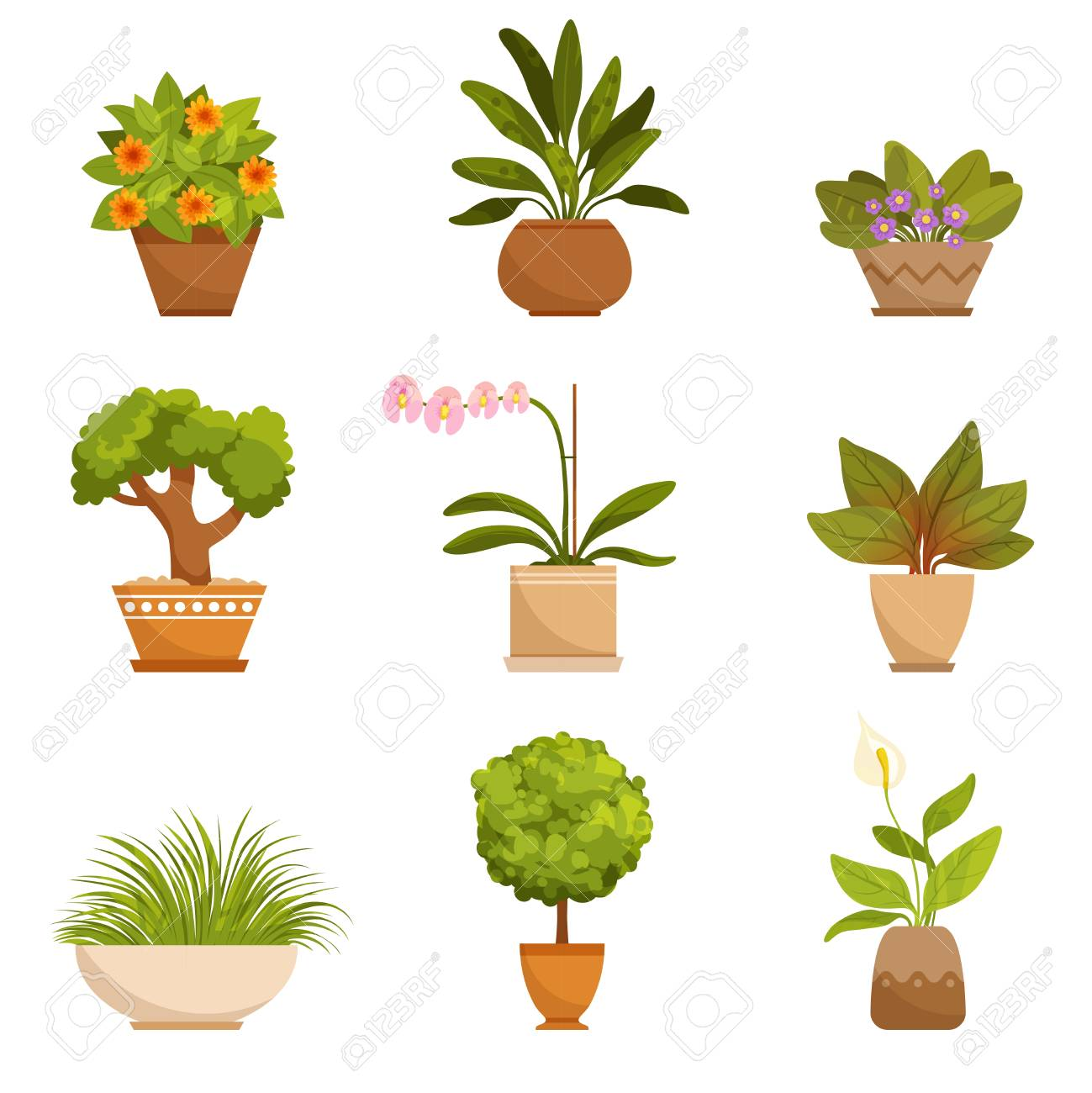 House Plants Illustrations In Cartoon Style Royalty Free Cliparts Vectors And Stock Illustration Image 92274165