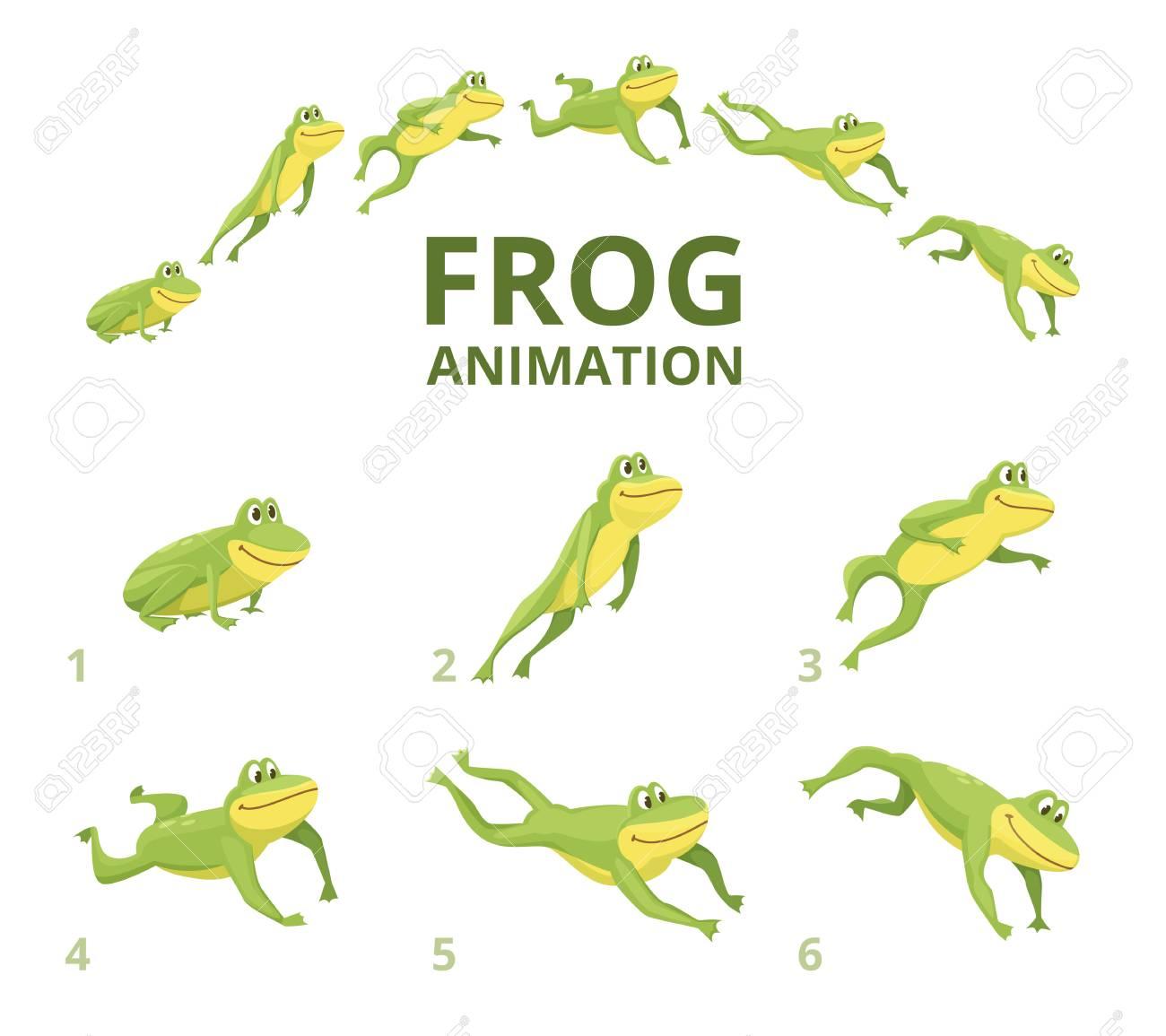 Frog jumping animation. Various keyframes for green animal. Vector frog animation, jump amphibian animated illustration - 110259216