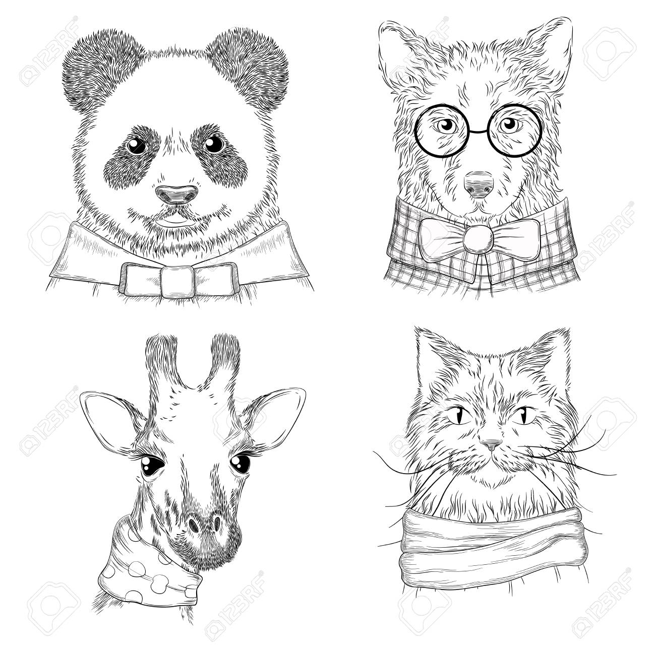 Hipster animals fashion adult illustrations wild animals in various clothes vector hand drawn sketches