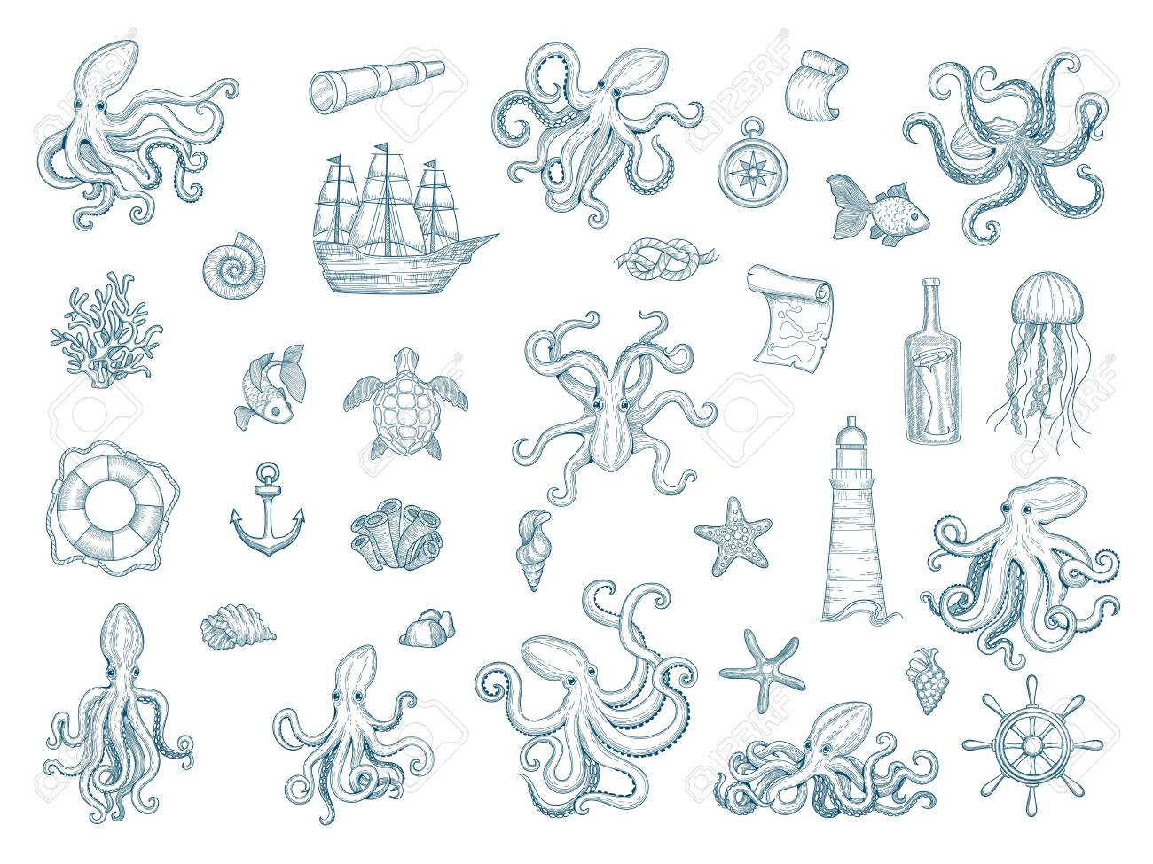 Marine illustrations. Octopus nautical set wild squid shells monster kraken vector hand drawn collection. Octopus monster, seafood and jellyfish illustration - 142897498