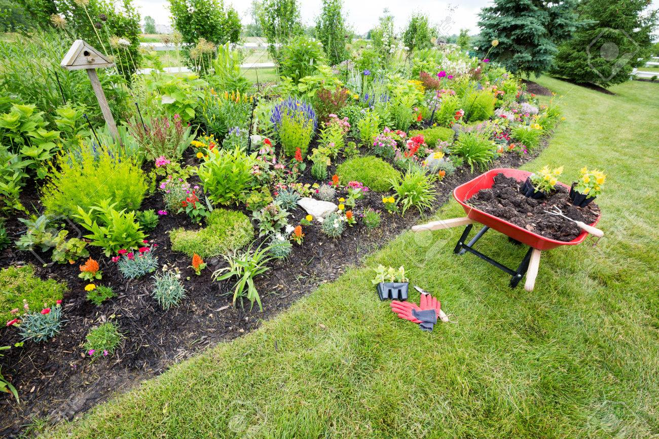 Garden Tools Laying On The Ground Near An Arrangement Of Beautiful Plants  And Flowers Stock Photo