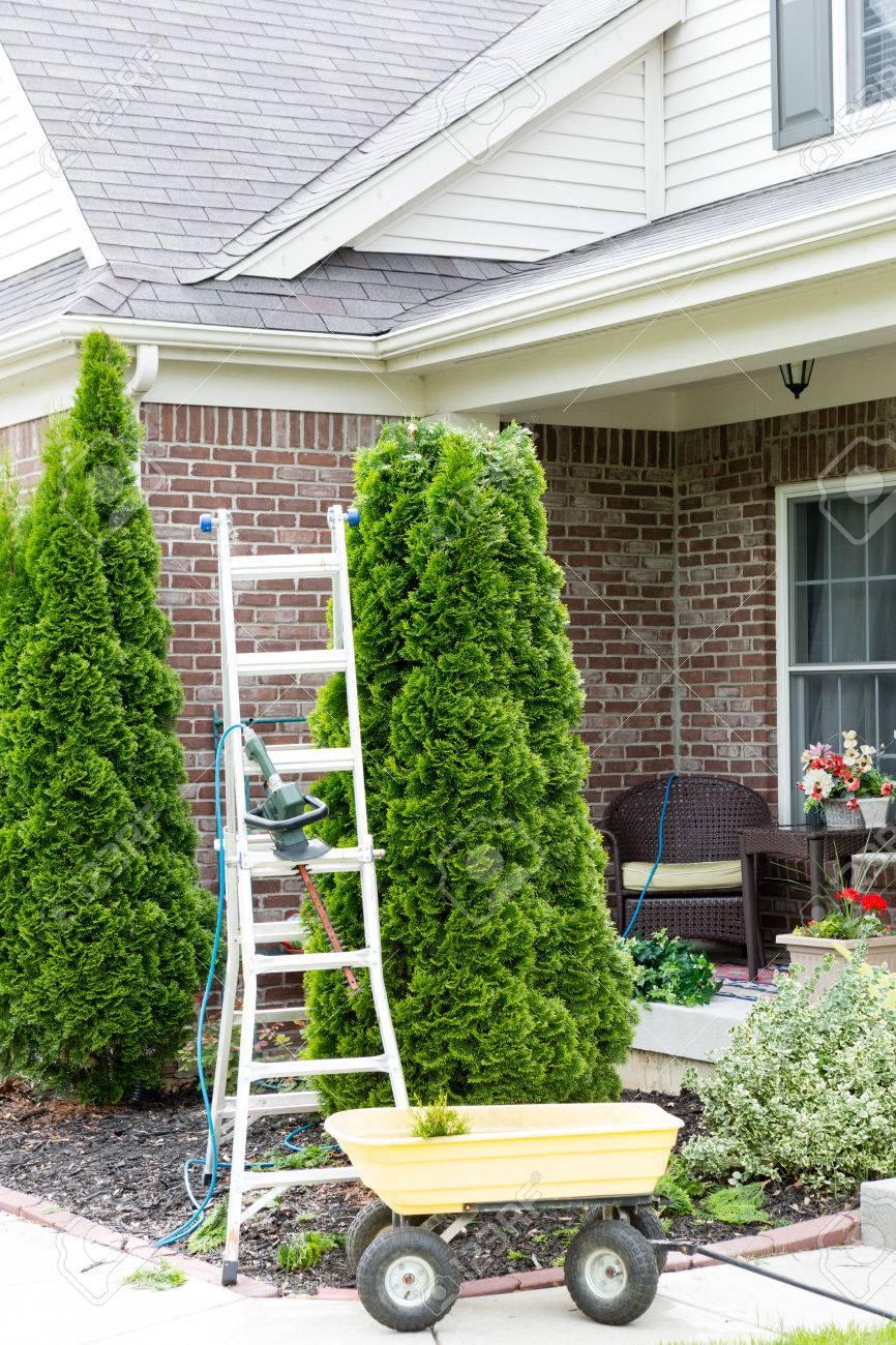 trabajar en el jardn alrededor de la casa con una escalera de pie junto a un