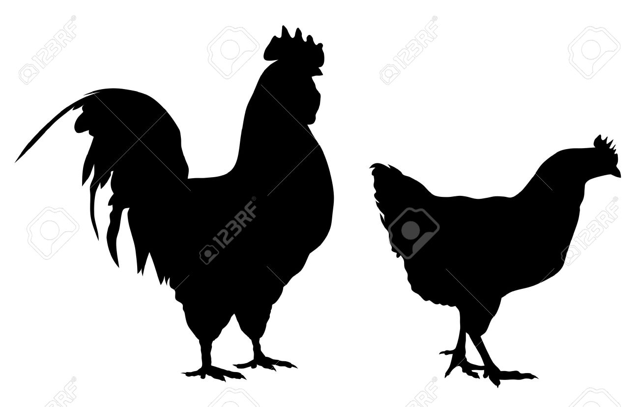 Abstract vector illustration of rooster and hen silhouettes Stock Vector - 6251345