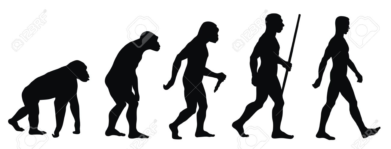 Abstract vector illustration of an evolution line - 9861012