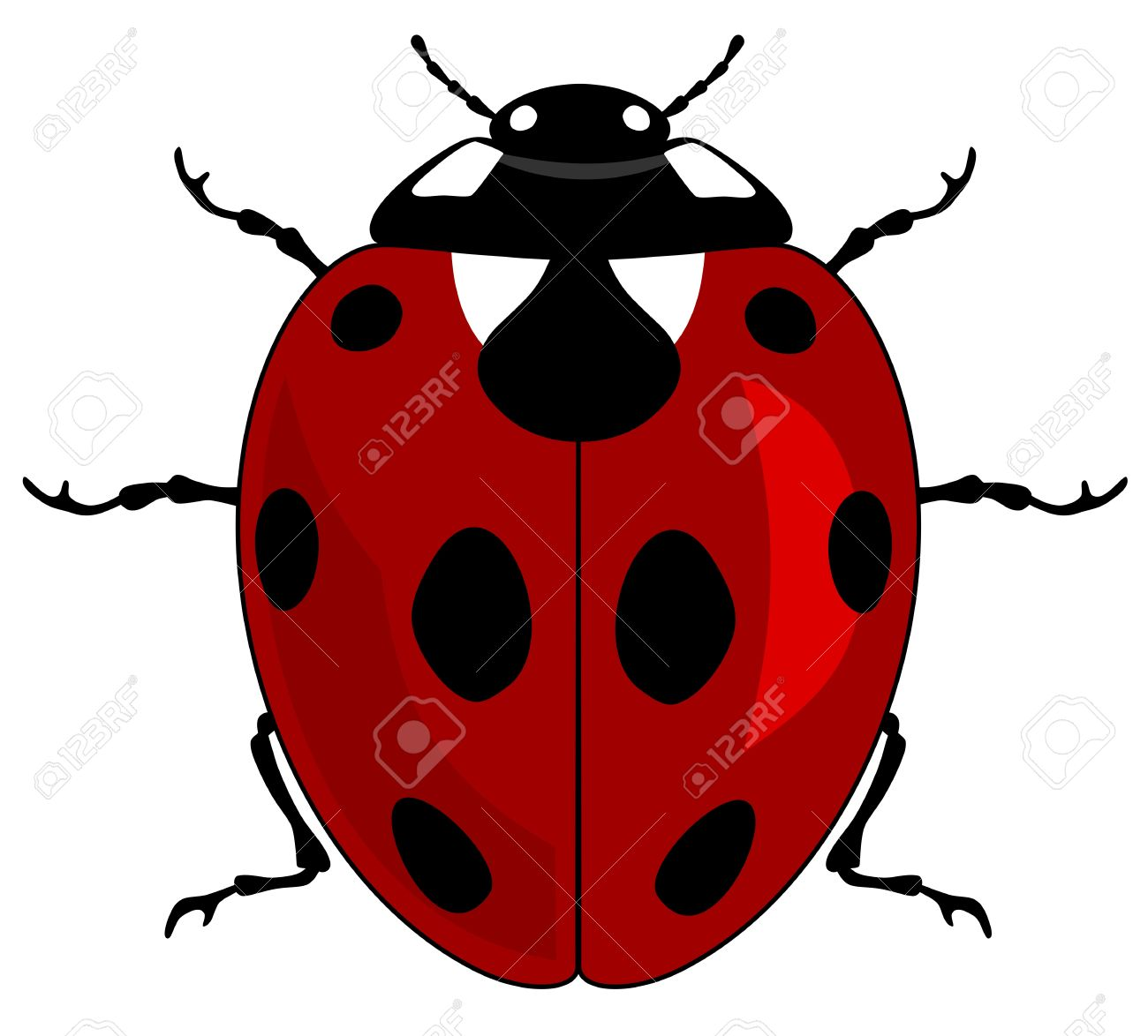 illustration of a ladybird Stock Vector - 10704676