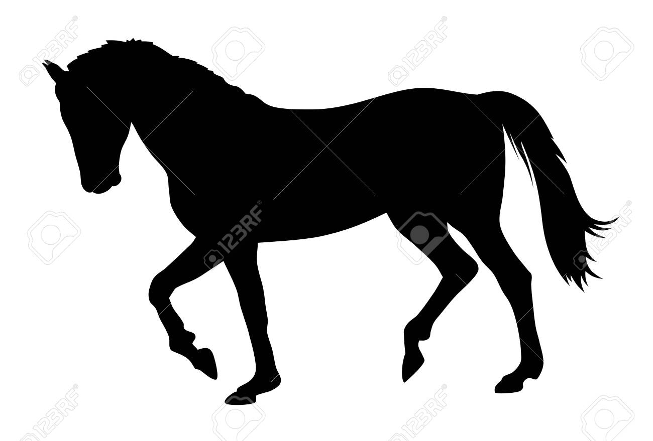 Vector illustration of running horse silhouette - 136629370