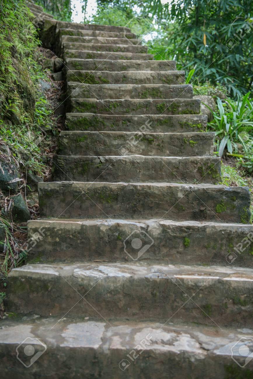 Stock Photo   Stone Stair