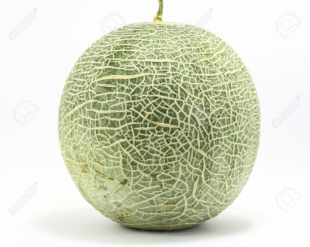 cantaloupe rock melon green cantelope cantaloupe muskmelon mushmelon