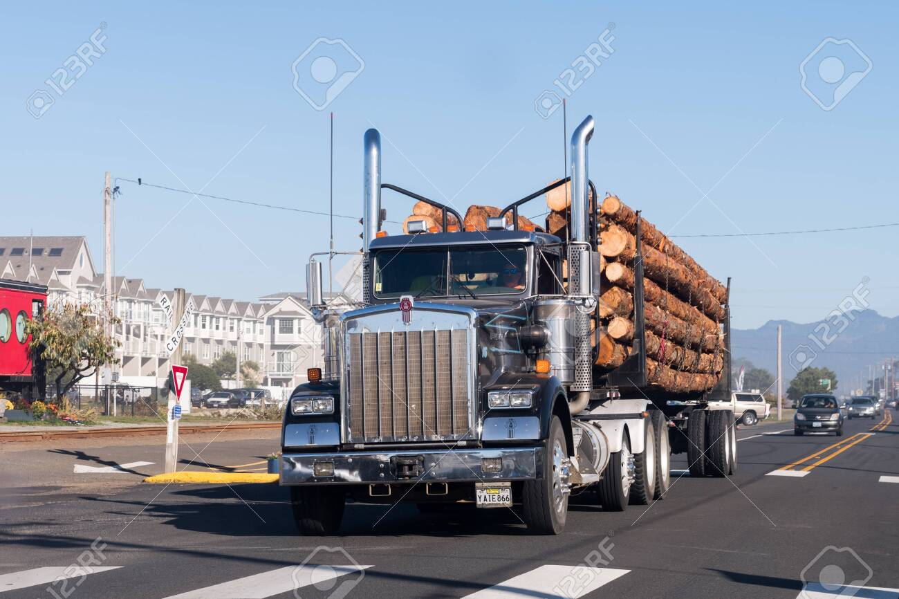 A large truck transports large trunks on the coast of Oregon, USA. - 121150302