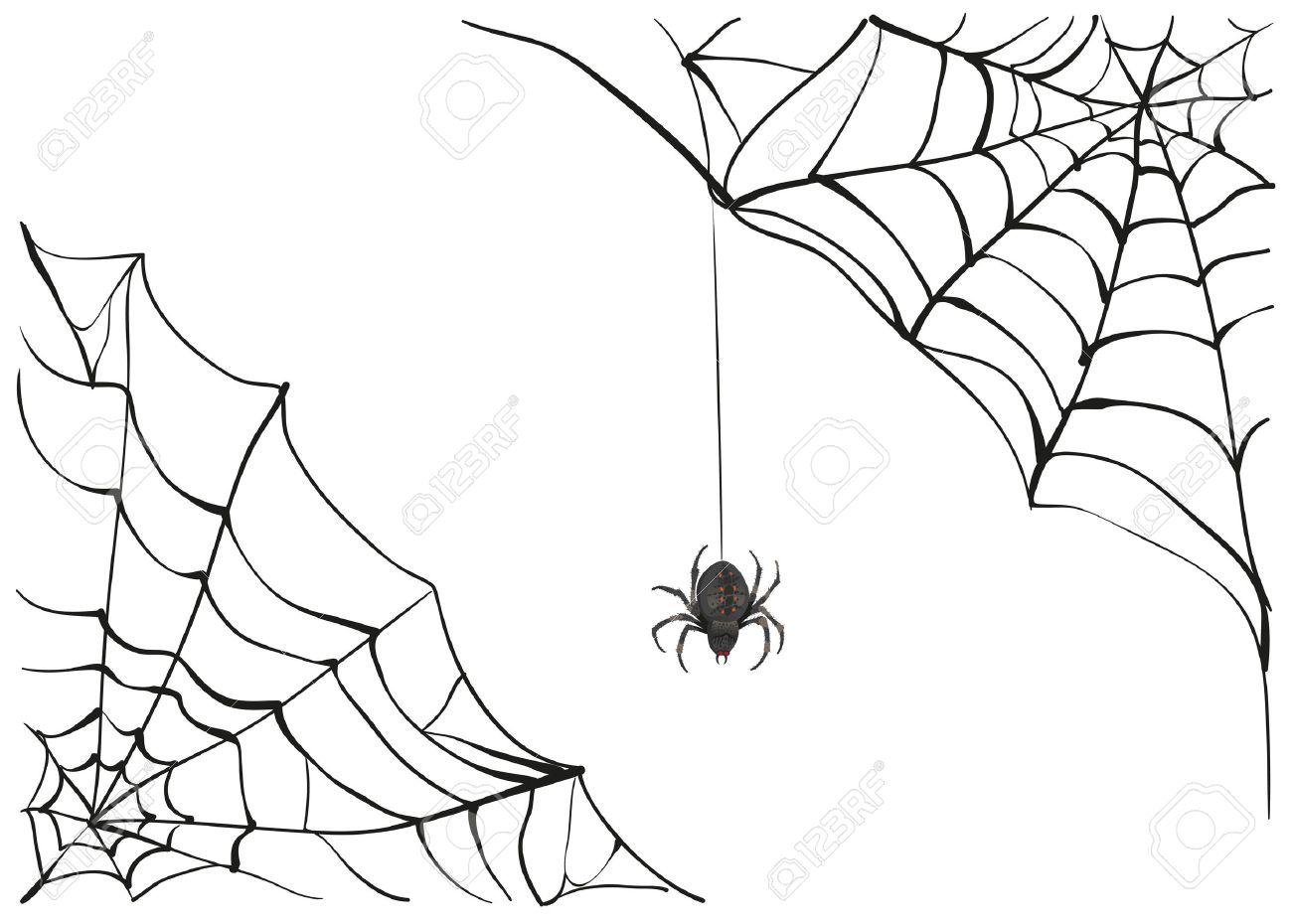 Spiderweb. Big black spider web. Black scary spider of web. Poison spider. Illustration in vector format - 46526612